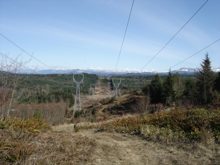 Spar Pole Hill Orting Washington