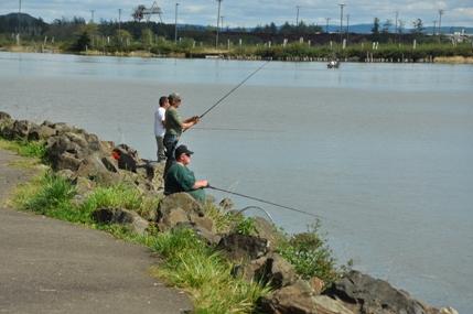 Morrison waterfront park aberdeen for Chehalis river fishing