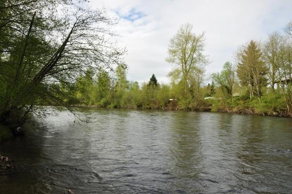 Riverside Park - Pierce County Parks & Recreation