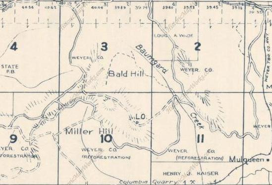 Miller Hill Lookout Site Weyerhaeuser Vail Tree Farm